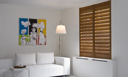 livingroom+shutters-47e85810